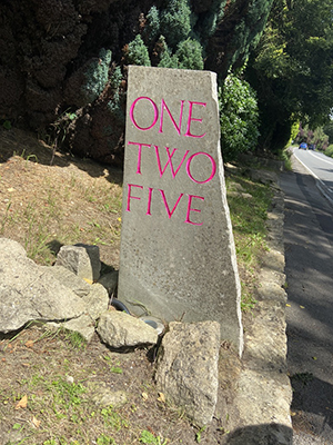 one two five street sign